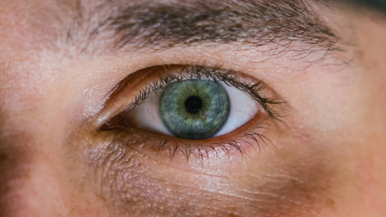 Ça se lit dans vos yeux …